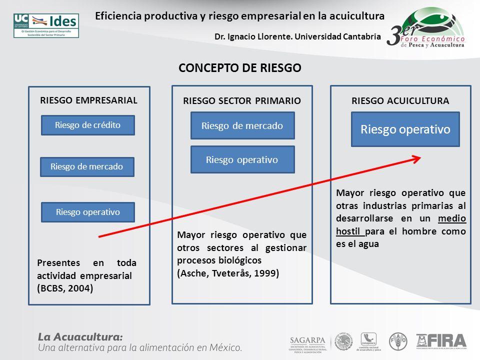 Eficiencia productiva y riesgo empresarial en la acuicultura Dr.