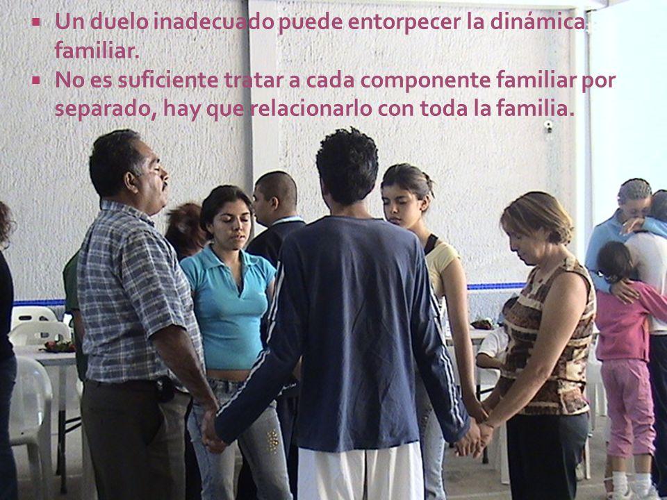 Un duelo inadecuado puede entorpecer la dinámica familiar. No es suficiente tratar a cada componente familiar por separado, hay que relacionarlo con t
