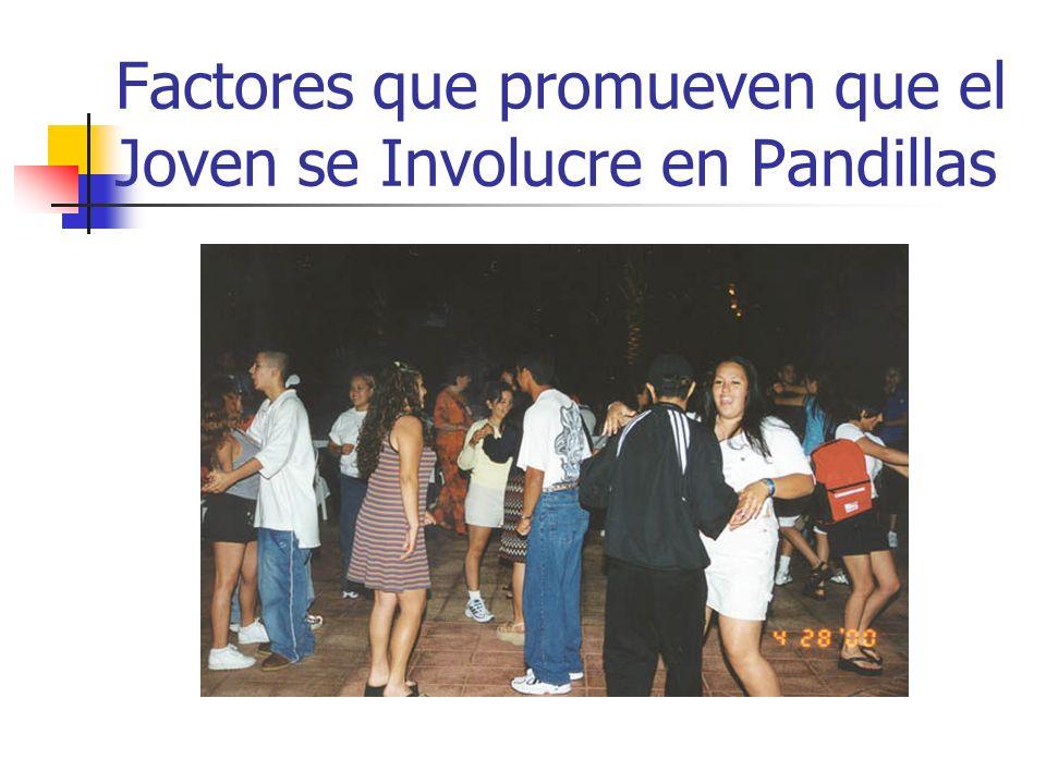 Factores que promueven que el Joven se Involucre en Pandillas