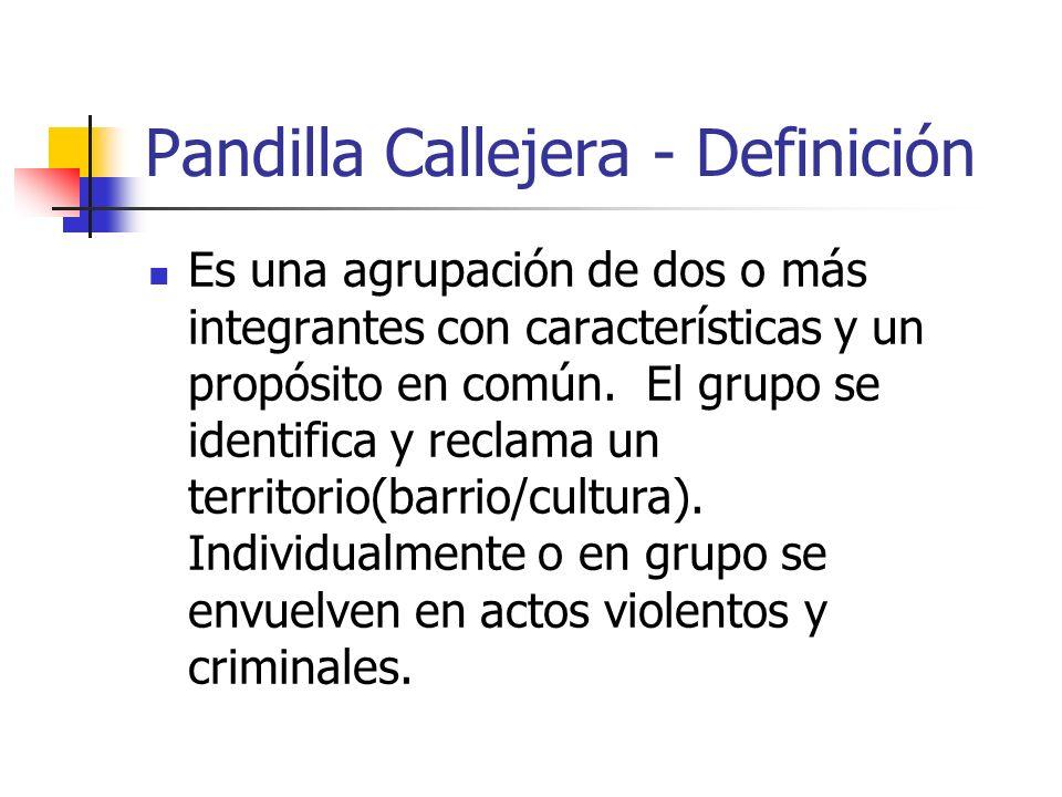 TIPOS DE PANDILLAS Pandilla Callejera – Miembros tienen enfrentamientos con las pandillas rivales de la zona para demostrar superioridad y control del espacio territorial.