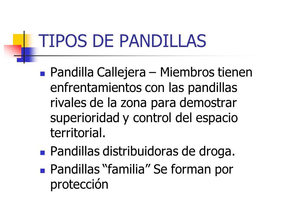 TIPOS DE PANDILLAS Pandilla Callejera – Miembros tienen enfrentamientos con las pandillas rivales de la zona para demostrar superioridad y control del