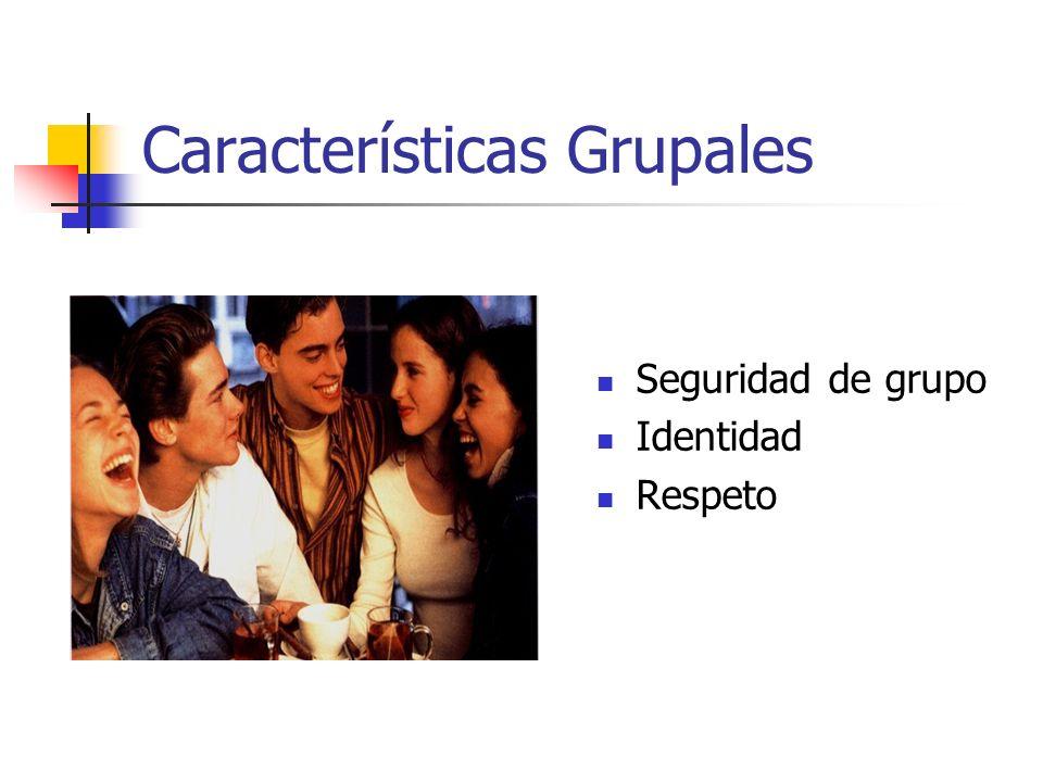 Características Grupales Seguridad de grupo Identidad Respeto
