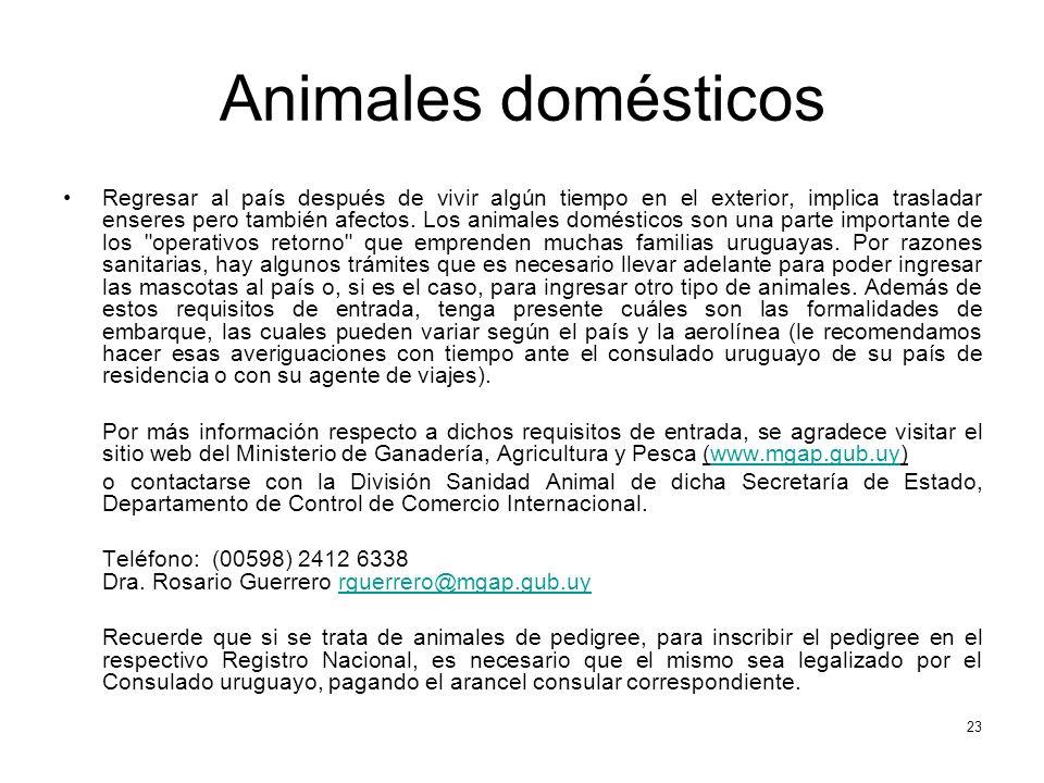 Animales domésticos Regresar al país después de vivir algún tiempo en el exterior, implica trasladar enseres pero también afectos. Los animales domést