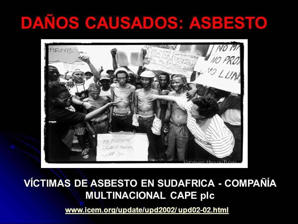 VÍCTIMAS DE ASBESTO EN SUDAFRICA - COMPAÑÍA MULTINACIONAL CAPE plc www.icem.org/update/upd2002/ upd02-02.html DAÑOS CAUSADOS: ASBESTO