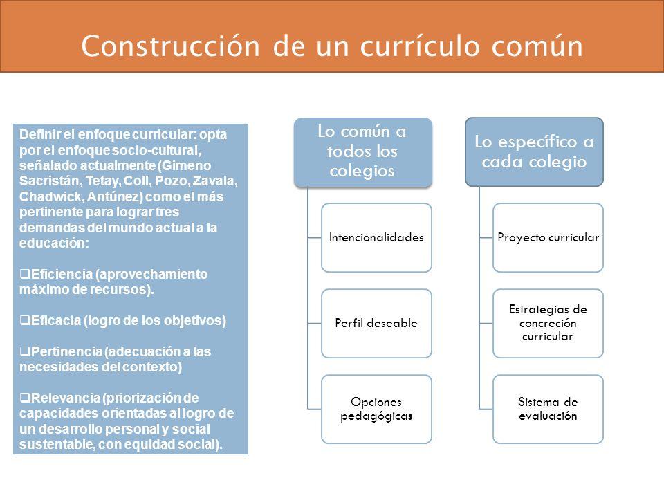 Construcción de un currículo común Lo común a todos los colegios IntencionalidadesPerfil deseable Opciones pedagógicas Lo específico a cada colegio Pr