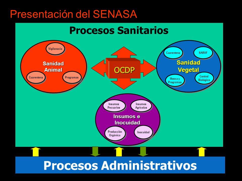 Presentación del SENASA Procesos Administrativos SanidadAnimalSanidadAnimal Vigilanacia Cuarentena Programas Procesos SanitariosSanidadVegetalSanidadV