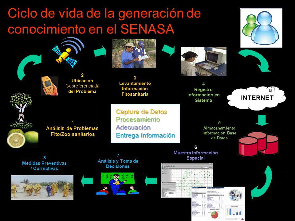 Ciclo de vida de la generación de conocimiento en el SENASA INTERNET 1 Análisis de Problemas Fito/Zoo sanitarios 2 Ubicación Georeferenciada del Probl