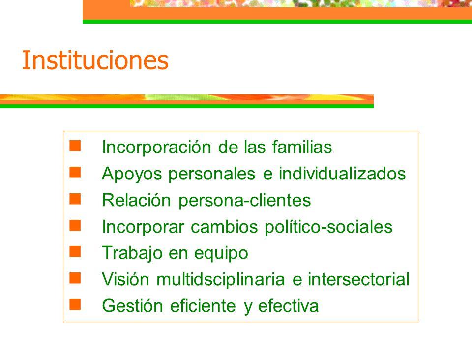 Incorporación de las familias Apoyos personales e individualizados Relación persona-clientes Incorporar cambios político-sociales Trabajo en equipo Vi