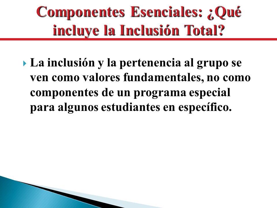 La inclusión y la pertenencia al grupo se ven como valores fundamentales, no como componentes de un programa especial para algunos estudiantes en espe