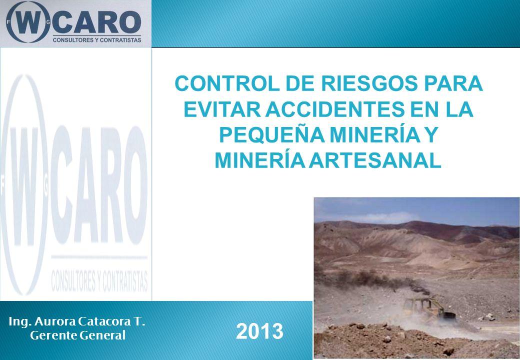 2013 CONTROL DE RIESGOS PARA EVITAR ACCIDENTES EN LA PEQUEÑA MINERÍA Y MINERÍA ARTESANAL Ing. Aurora Catacora T. Gerente General
