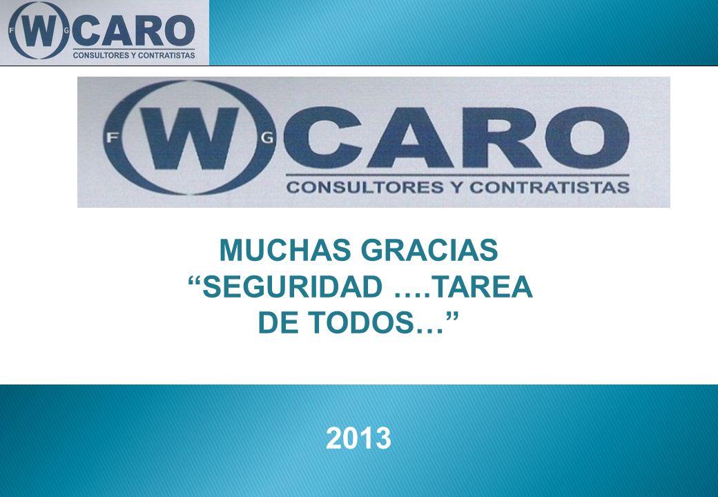 MUCHAS GRACIAS SEGURIDAD ….TAREA DE TODOS… 2013