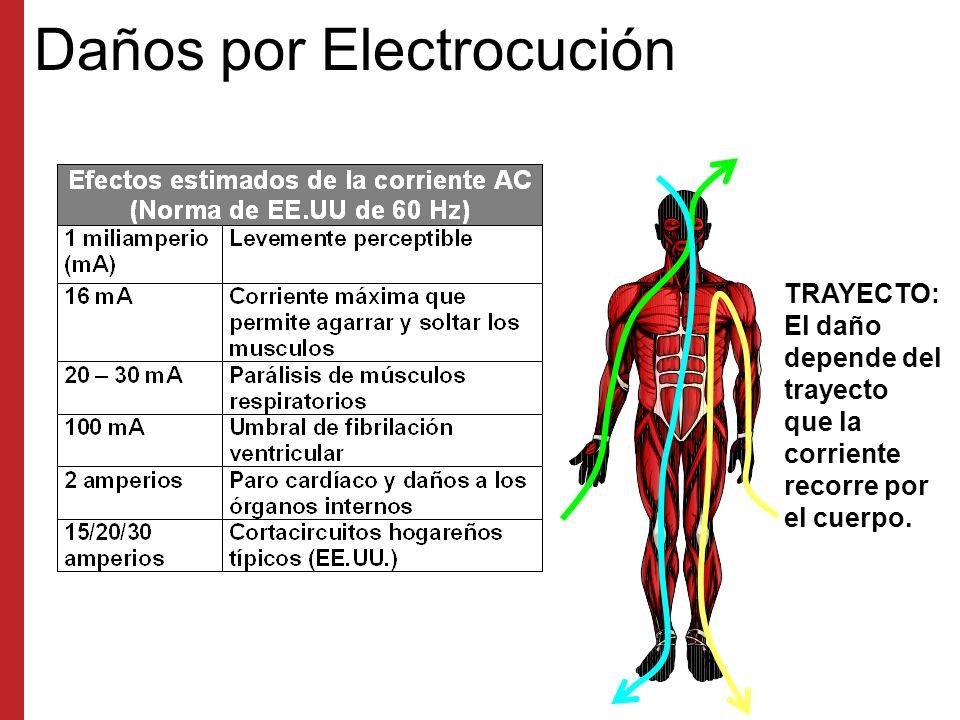 Alambrado Eléctrico y el Sistema de Iluminación Temporera