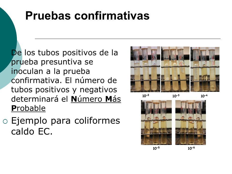 De los tubos positivos de la prueba presuntiva se inoculan a la prueba confirmativa.