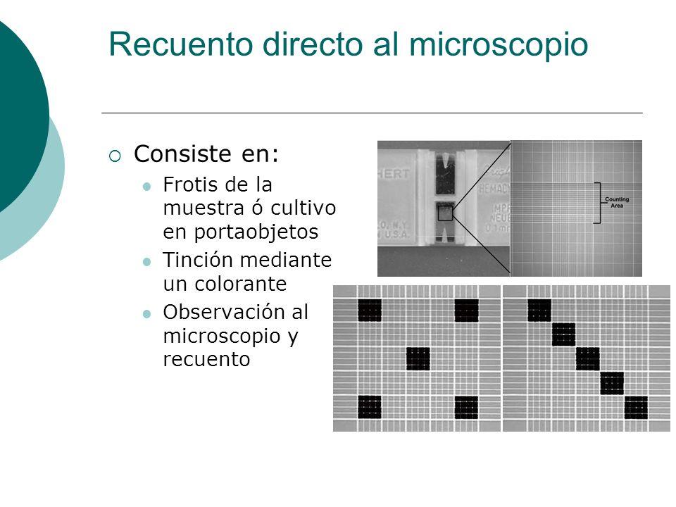 Recuento directo al microscopio Consiste en: Frotis de la muestra ó cultivo en portaobjetos Tinción mediante un colorante Observación al microscopio y recuento