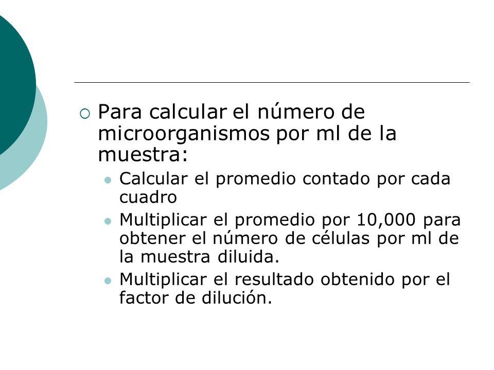 Para calcular el número de microorganismos por ml de la muestra: Calcular el promedio contado por cada cuadro Multiplicar el promedio por 10,000 para obtener el número de células por ml de la muestra diluida.