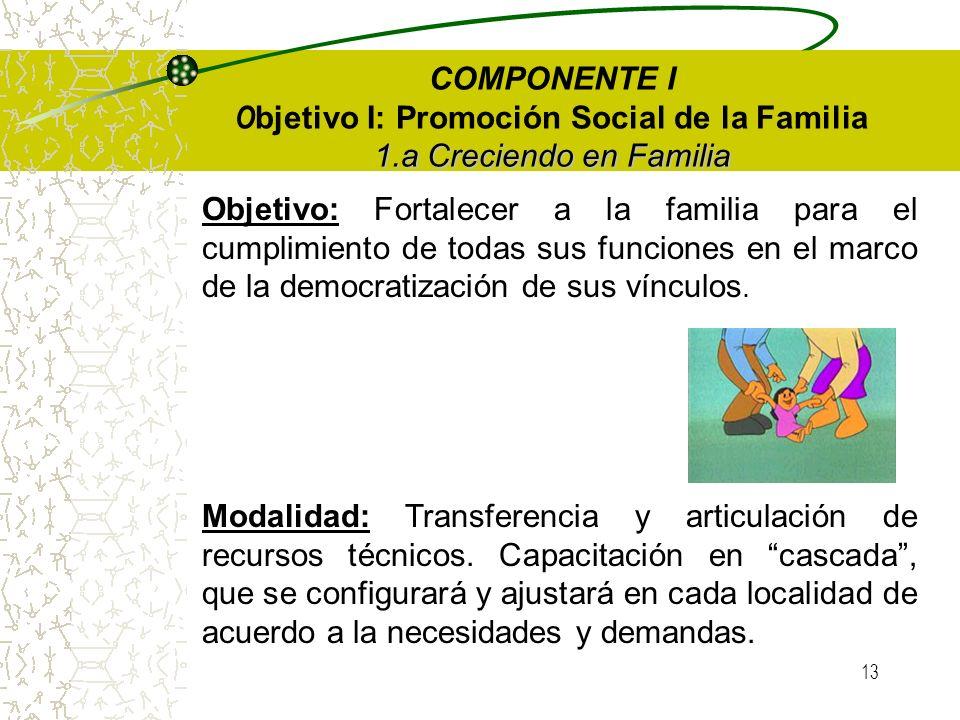 12 Componente IV: Modalidad Institucional Centros Integrales de Familia