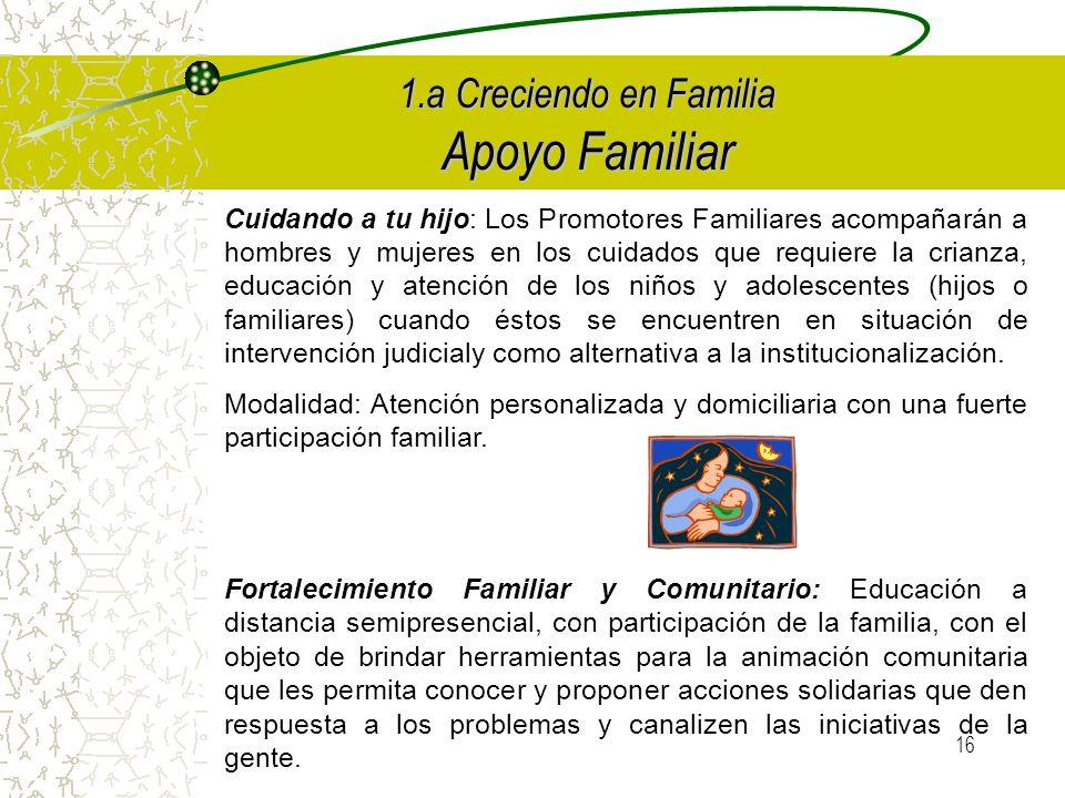 15 1.a Creciendo en Familia Los Formadores capacitarán: ¥ Promotores Familiares: Son aquellas personas capacitadas para promover y ejecutar acciones que fortalezcan a las familias en el ejercicio de sus funciones, fundamentalmente en el desarrollo infantil.