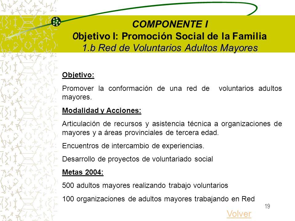 18 1.a Creciendo en Familia Puericultoras, Promotores Familiares y Comunitarios Metas 2004 Personas capacitadas: 7.000 Cursos/talleres: 210 7 Terciari