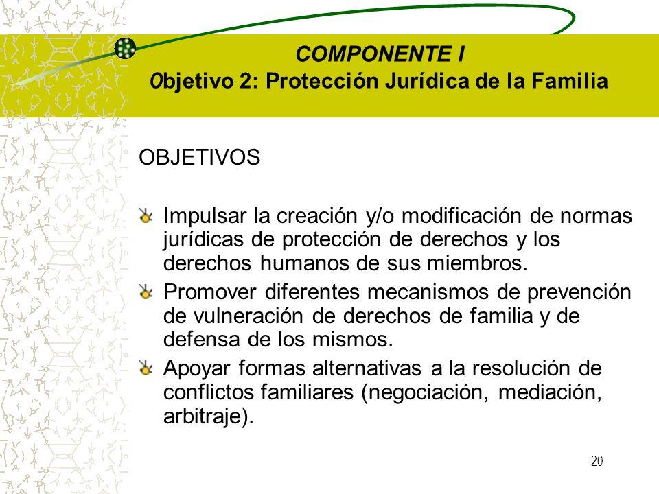 19 Objetivo: Promover la conformación de una red de voluntarios adultos mayores. Modalidad y Acciones: Articulación de recursos y asistencia técnica a