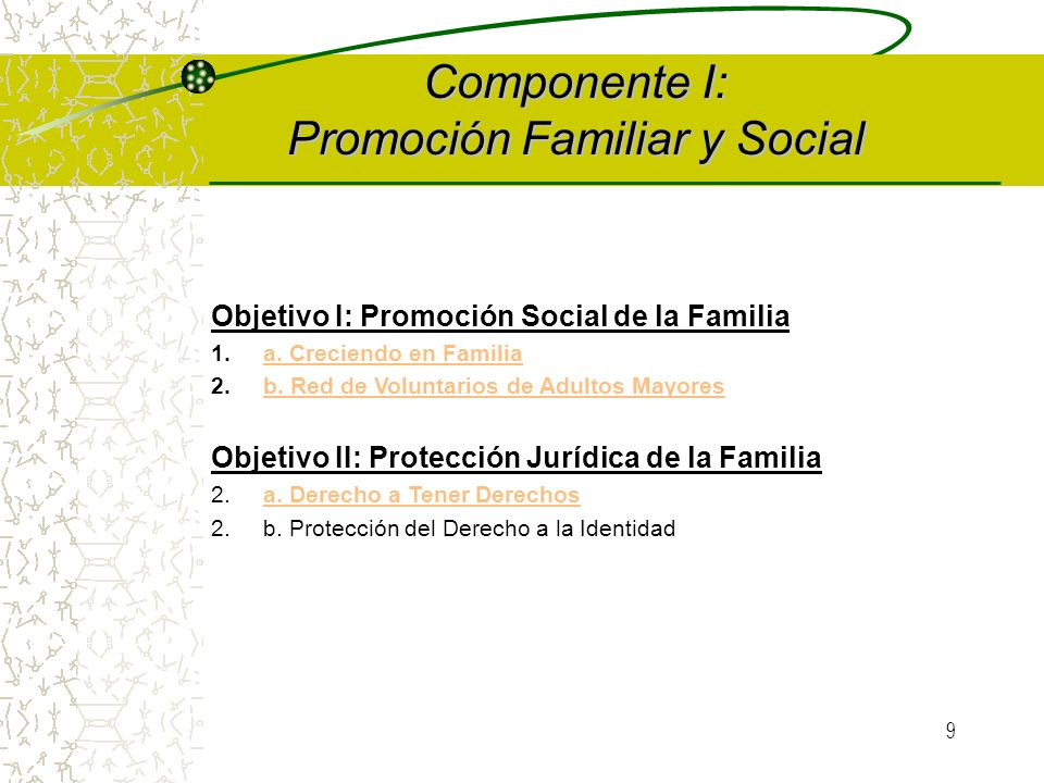 8 I. Promoción Familiar y Social Promoción social de la Familia. Protección jurídica de la Familia. II. Atención a las Familias en Situaciones Especia