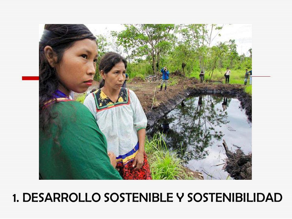 DESARROLLO SOSTENIBLE COMPONENTE SOCIO-CULTURAL COMPONENTE ECONÓMICO COMPONENTE AMBIENTAL Fuente: Mariana Loayza.