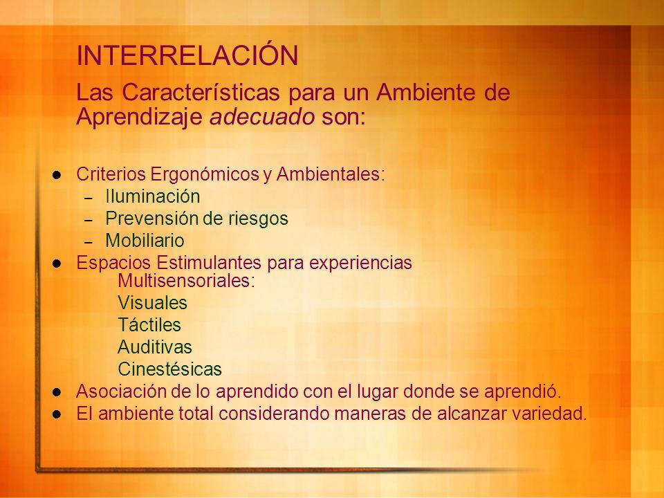 INTERRELACIÓN Las Características para un Ambiente de Aprendizaje adecuado son: Criterios Ergonómicos y Ambientales: – Iluminación – Prevensión de rie