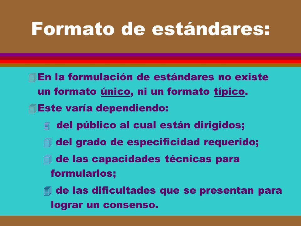 Formato de estándares: 4En la formulación de estándares no existe un formato único, ni un formato típico. 4Este varía dependiendo: 4 del público al cu