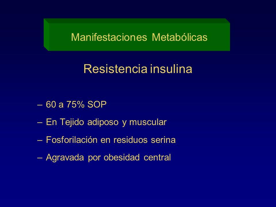 Manifestaciones Metabólicas Resistencia insulina –60 a 75% SOP –En Tejido adiposo y muscular –Fosforilación en residuos serina –Agravada por obesidad
