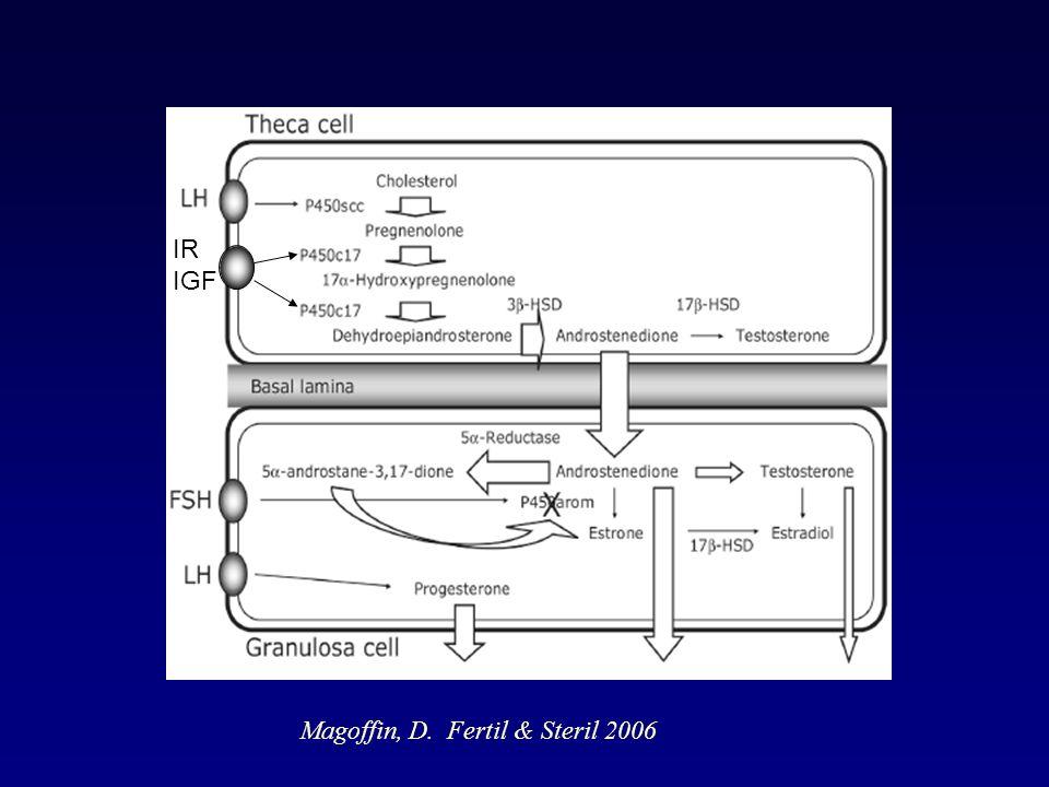 IR IGF Magoffin, D. Fertil & Steril 2006