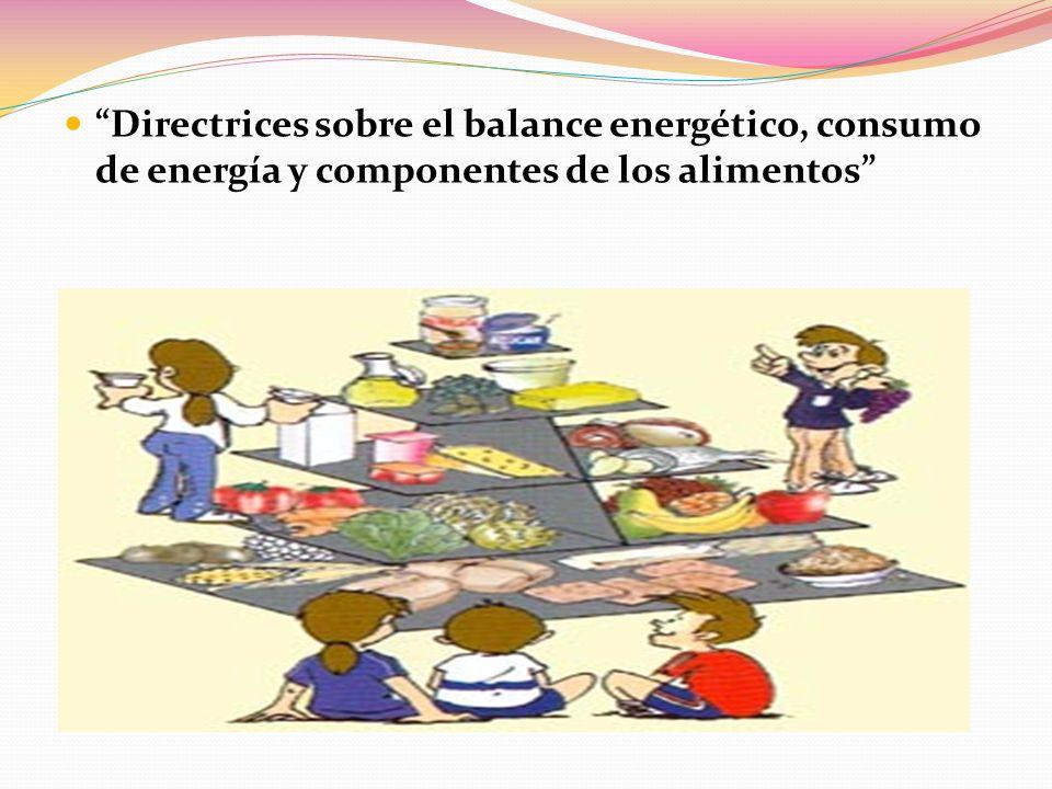 Directrices sobre el balance energético, consumo de energía y componentes de los alimentos
