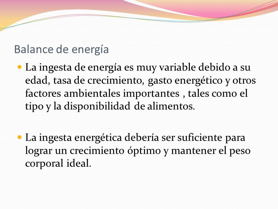 Balance de energía La ingesta de energía es muy variable debido a su edad, tasa de crecimiento, gasto energético y otros factores ambientales importan