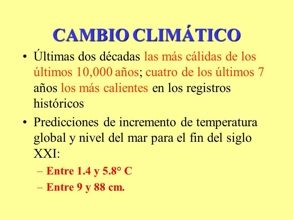 CAMBIO CLIMÁTICO Últimas dos décadas las más cálidas de los últimos 10,000 años; cuatro de los últimos 7 años los más calientes en los registros históricos Predicciones de incremento de temperatura global y nivel del mar para el fin del siglo XXI: –Entre 1.4 y 5.8° C –Entre 9 y 88 cm.
