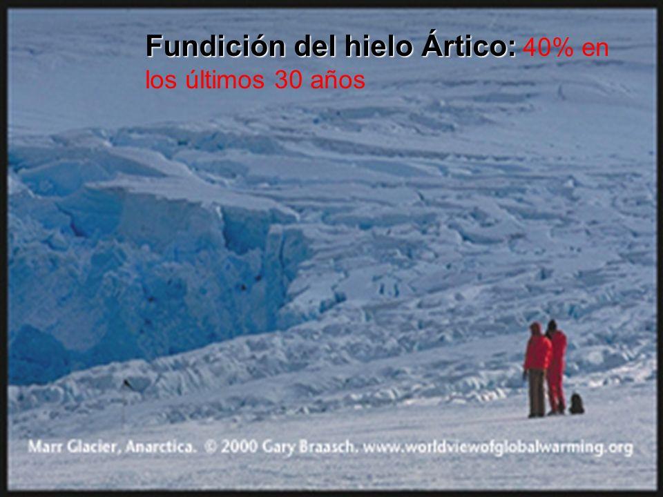Fundición del hielo Ártico: Fundición del hielo Ártico: 40% en los últimos 30 años
