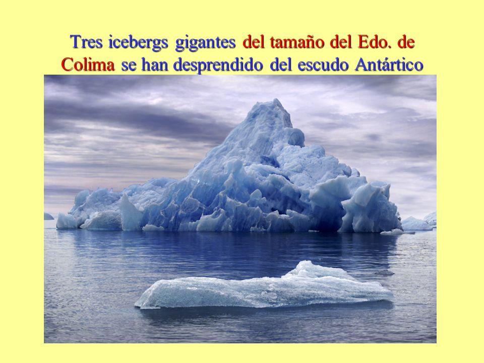 Tres icebergs gigantes del tamaño del Edo. de Colima se han desprendido del escudo Antártico