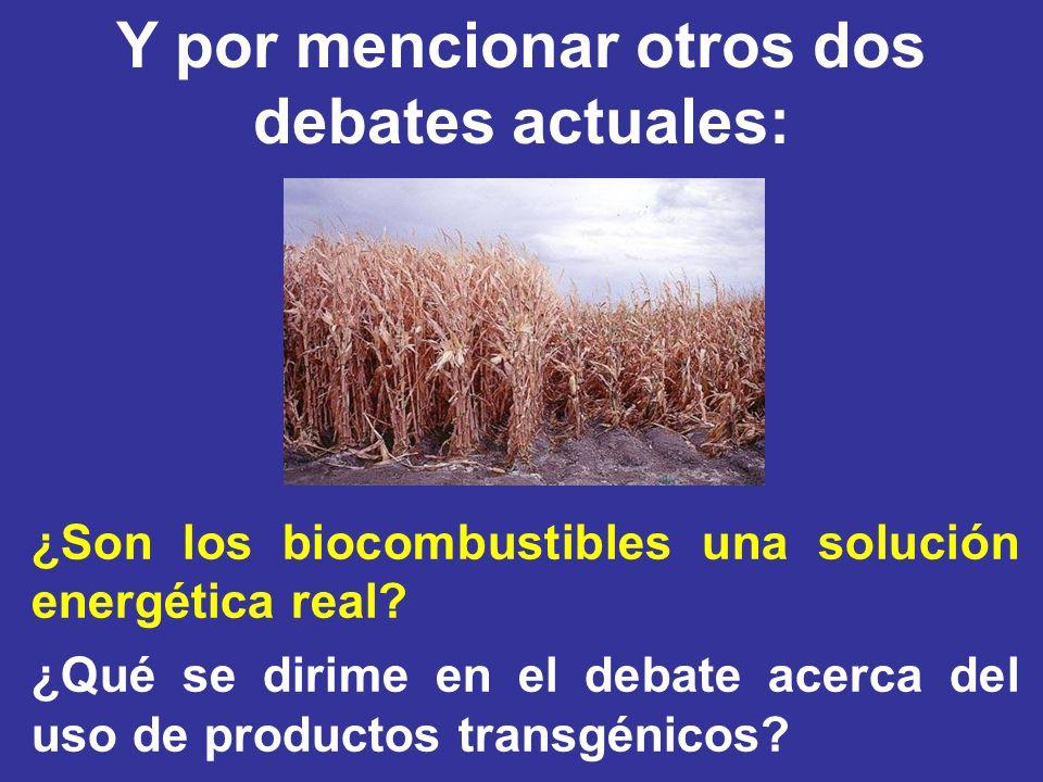 ¿Son los biocombustibles una solución energética real? ¿Qué se dirime en el debate acerca del uso de productos transgénicos? Y por mencionar otros dos