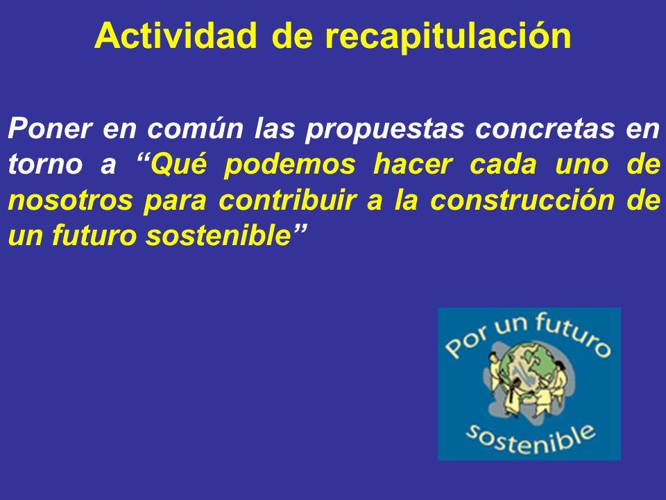 Actividad de recapitulación Poner en común las propuestas concretas en torno a Qué podemos hacer cada uno de nosotros para contribuir a la construcció
