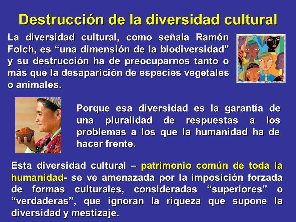 Destrucción de la diversidad cultural La diversidad cultural, como señala Ramón Folch, es una dimensión de la biodiversidad y su destrucción ha de pre