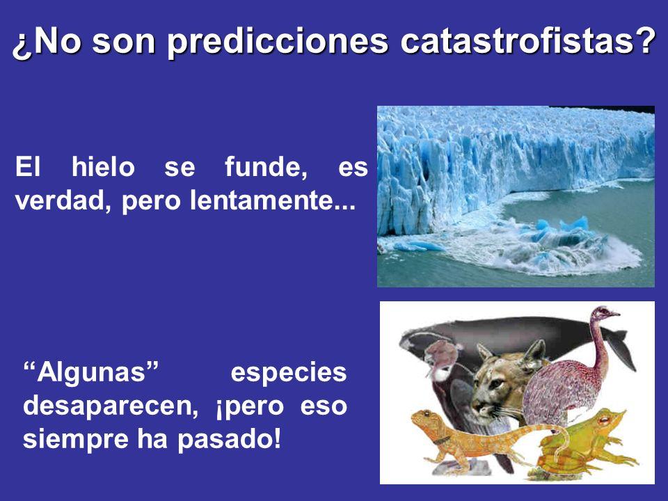 ¿No son predicciones catastrofistas? El hielo se funde, es verdad, pero lentamente... Algunas especies desaparecen, ¡pero eso siempre ha pasado!