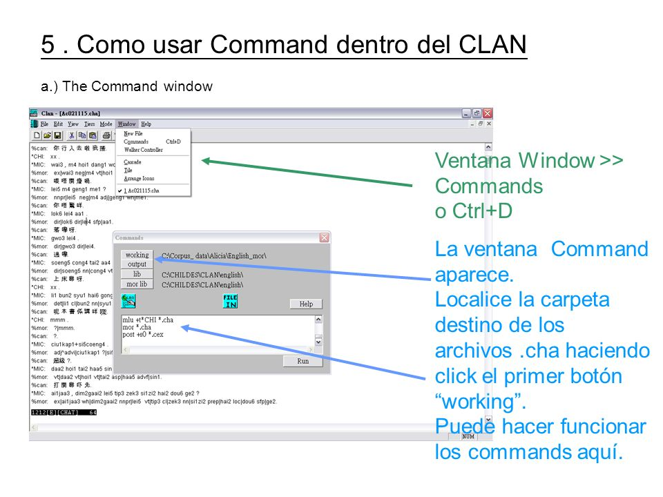 5. Como usar Command dentro del CLAN a.) The Command window Ventana Window >> Commands o Ctrl+D La ventana Command aparece. Localice la carpeta destin