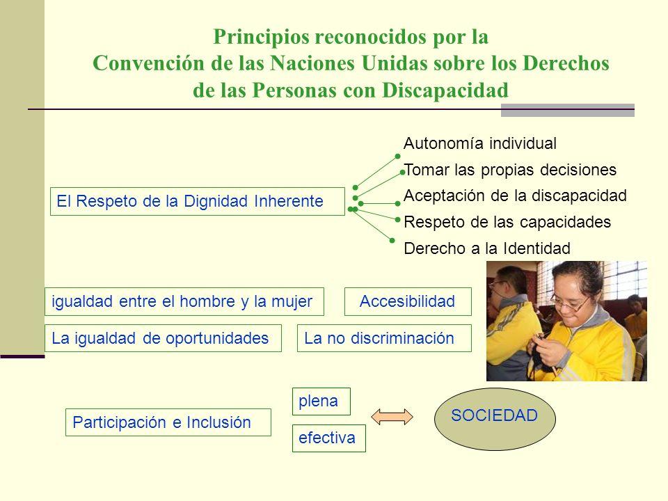 Principios reconocidos por la Convención de las Naciones Unidas sobre los Derechos de las Personas con Discapacidad Autonomía individual Tomar las pro