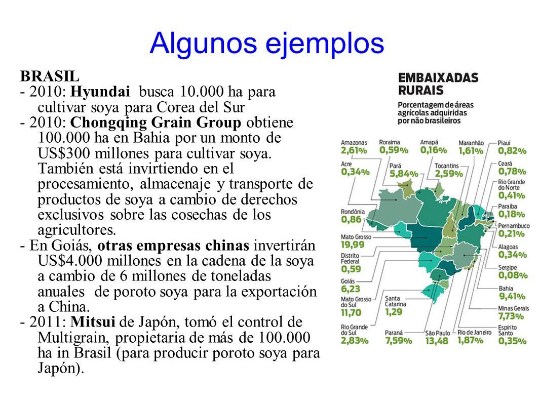 Algunos ejemplos BRASIL - 2010: Hyundai busca 10.000 ha para cultivar soya para Corea del Sur - 2010: Chongqing Grain Group obtiene 100.000 ha en Bahi