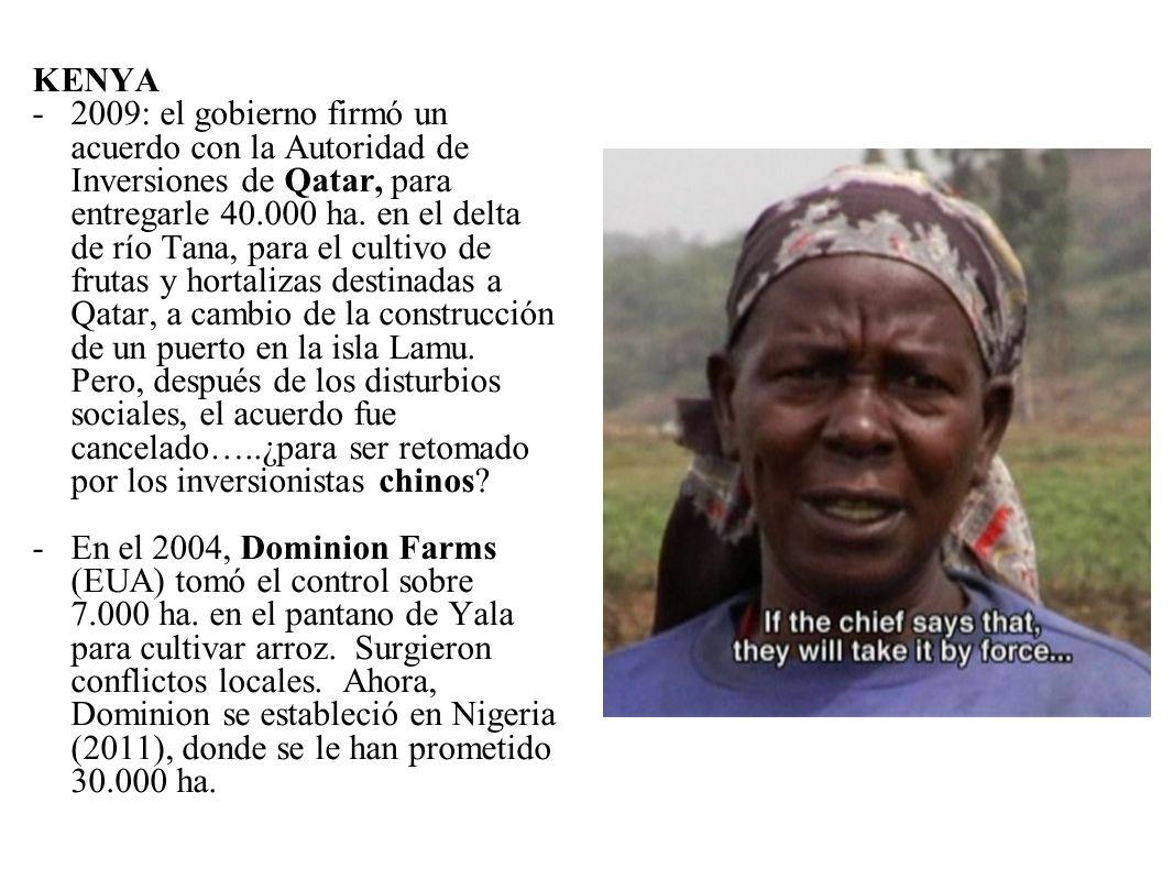 KENYA -2009: el gobierno firmó un acuerdo con la Autoridad de Inversiones de Qatar, para entregarle 40.000 ha. en el delta de río Tana, para el cultiv
