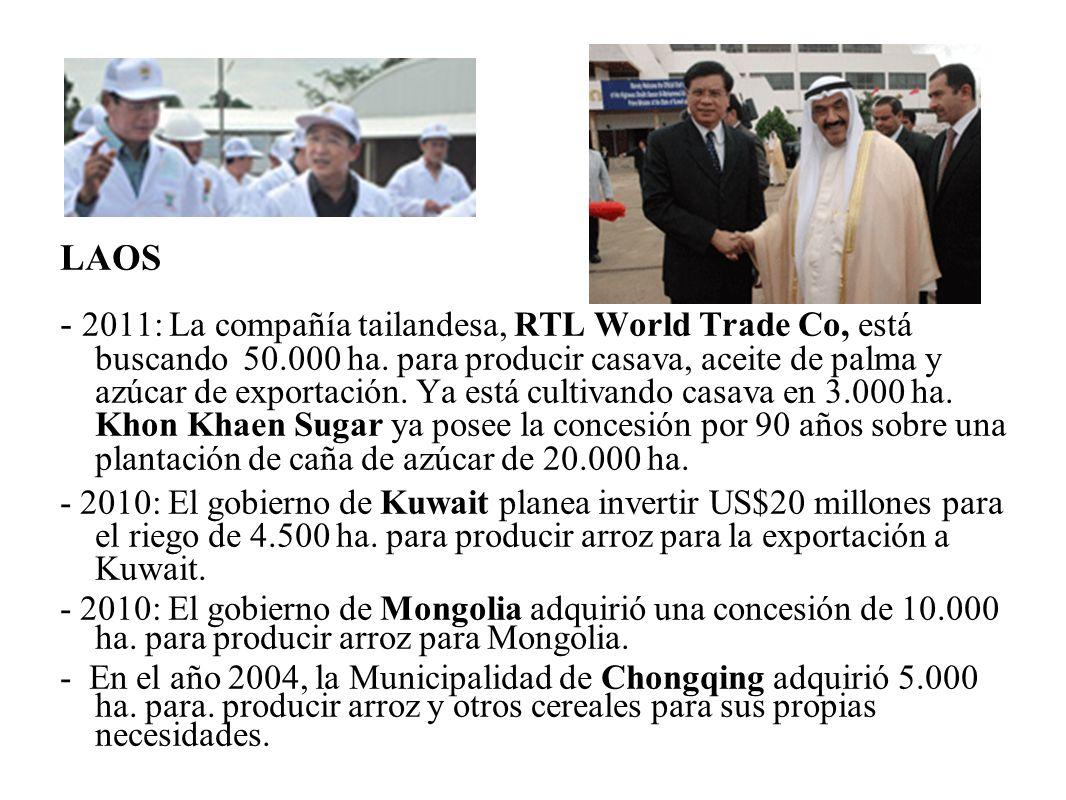 LAOS - 2011: La compañía tailandesa, RTL World Trade Co, está buscando 50.000 ha. para producir casava, aceite de palma y azúcar de exportación. Ya es