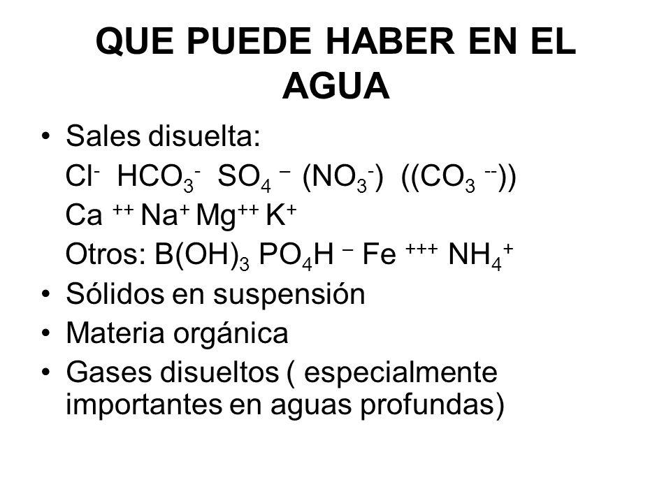 QUE PUEDE HABER EN EL AGUA Sales disuelta: Cl - HCO 3 - SO 4 – (NO 3 - ) ((CO 3 -- )) Ca ++ Na + Mg ++ K + Otros: B(OH) 3 PO 4 H – Fe +++ NH 4 + Sólid