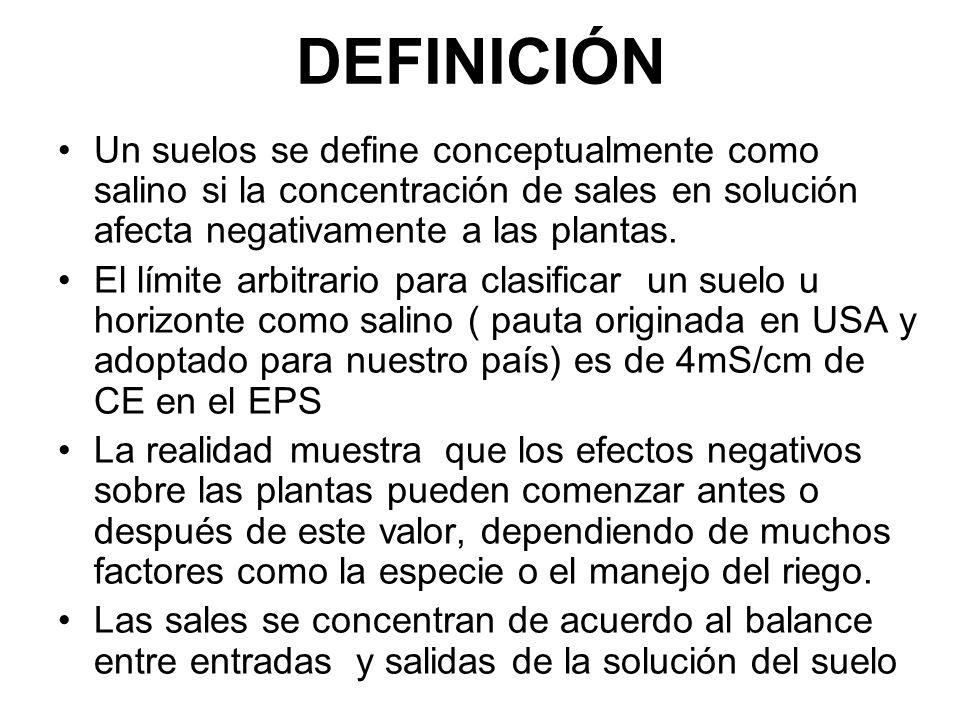 DEFINICIÓN Un suelos se define conceptualmente como salino si la concentración de sales en solución afecta negativamente a las plantas. El límite arbi