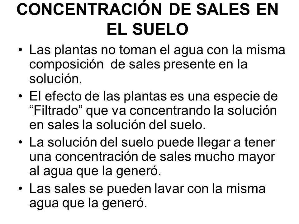 CONCENTRACIÓN DE SALES EN EL SUELO Las plantas no toman el agua con la misma composición de sales presente en la solución. El efecto de las plantas es