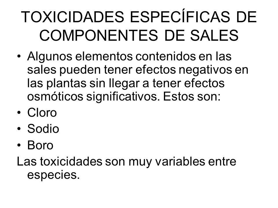 TOXICIDADES ESPECÍFICAS DE COMPONENTES DE SALES Algunos elementos contenidos en las sales pueden tener efectos negativos en las plantas sin llegar a t