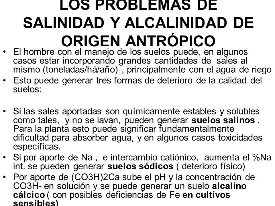 LOS PROBLEMAS DE SALINIDAD Y ALCALINIDAD DE ORIGEN ANTRÓPICO El hombre con el manejo de los suelos puede, en algunos casos estar incorporando grandes