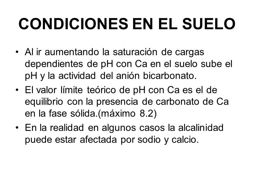 CONDICIONES EN EL SUELO Al ir aumentando la saturación de cargas dependientes de pH con Ca en el suelo sube el pH y la actividad del anión bicarbonato