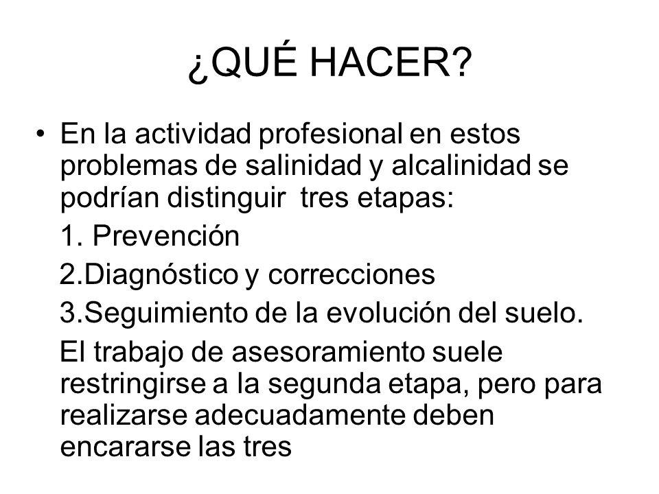 ¿QUÉ HACER? En la actividad profesional en estos problemas de salinidad y alcalinidad se podrían distinguir tres etapas: 1. Prevención 2.Diagnóstico y